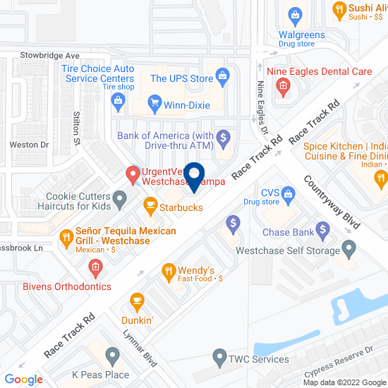 Dentist in Tampa, FL (Racetrack Rd) - Great Expressions